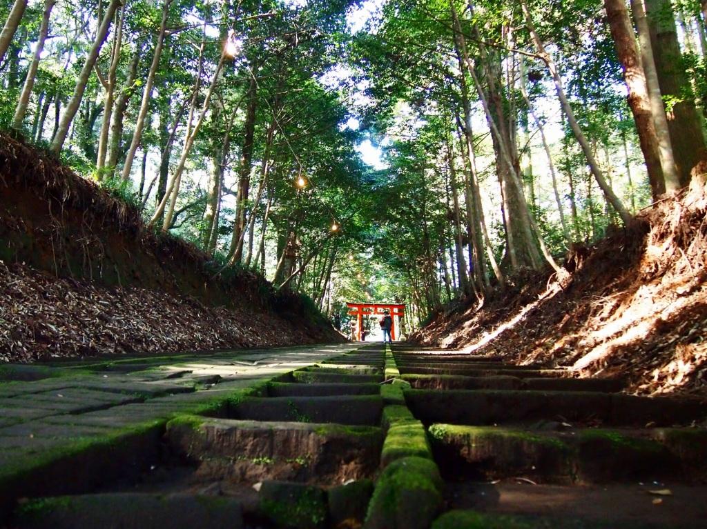 霧島岑神社の参道
